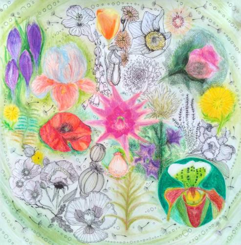 Synergická zahrada