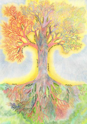 Synergický strom I
