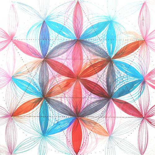 Synergická spolupráce II
