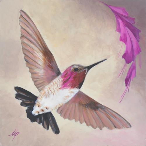 Kolibřík III